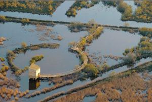 La Camargue gardoise un espace naturel préservé (Photo SMCG Alain Colombaud)