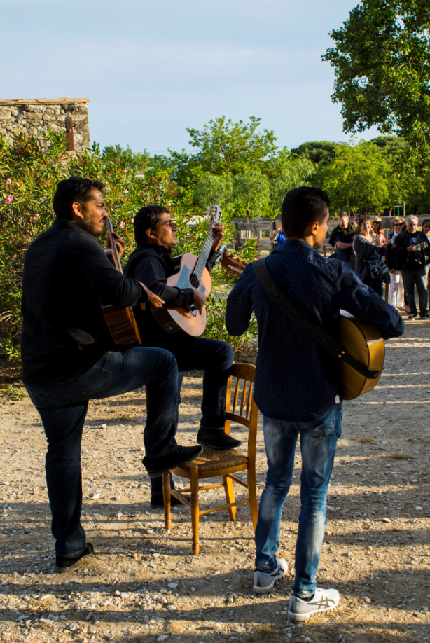 Les gipsy accompagnent le travail des gardians en chanson.