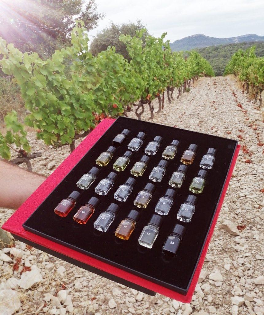 Différents arômes présents dans les vins